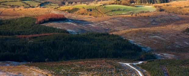 Cavan Bog Land